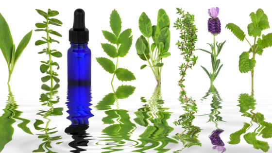 Aromatherapy Apothecary with Nicola Salter